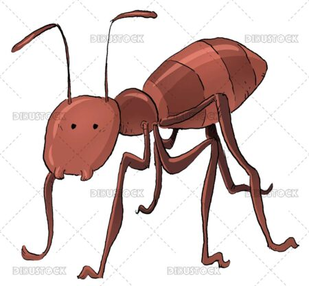 Ant insect illustration
