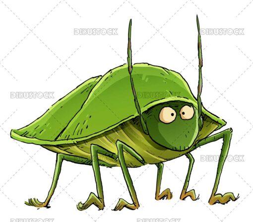 Southern green stink bug illustration