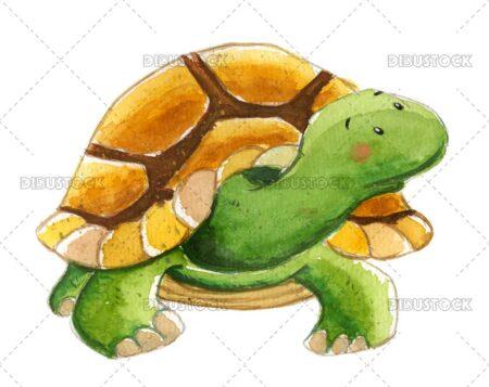 Watercolor childrens turtle illustration