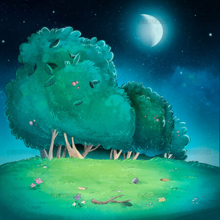 Illustration of meadow background at night