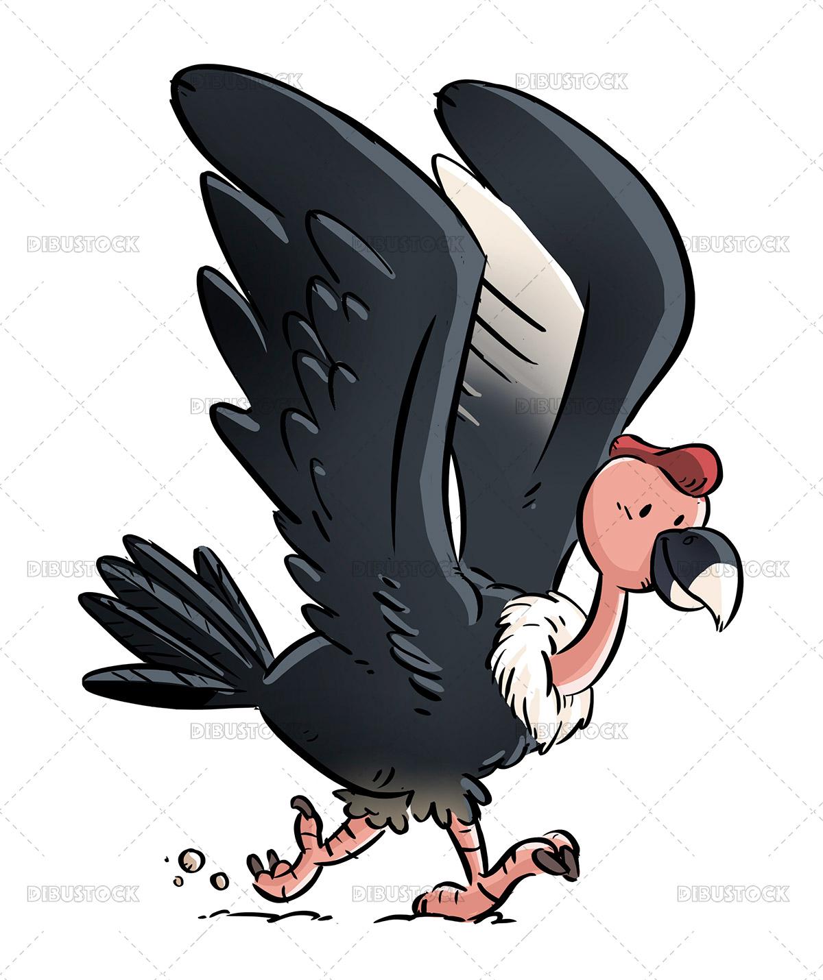Condor illustration for children